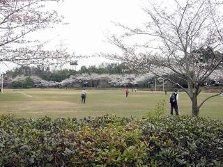 Sakura Jousi Park
